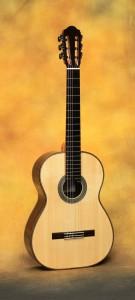 Darren Hippner Classical Guitar