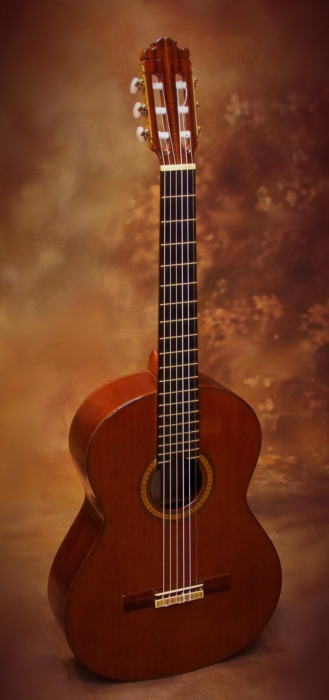 manuel contreras 1976 1a classical guitar savage classical guitar. Black Bedroom Furniture Sets. Home Design Ideas