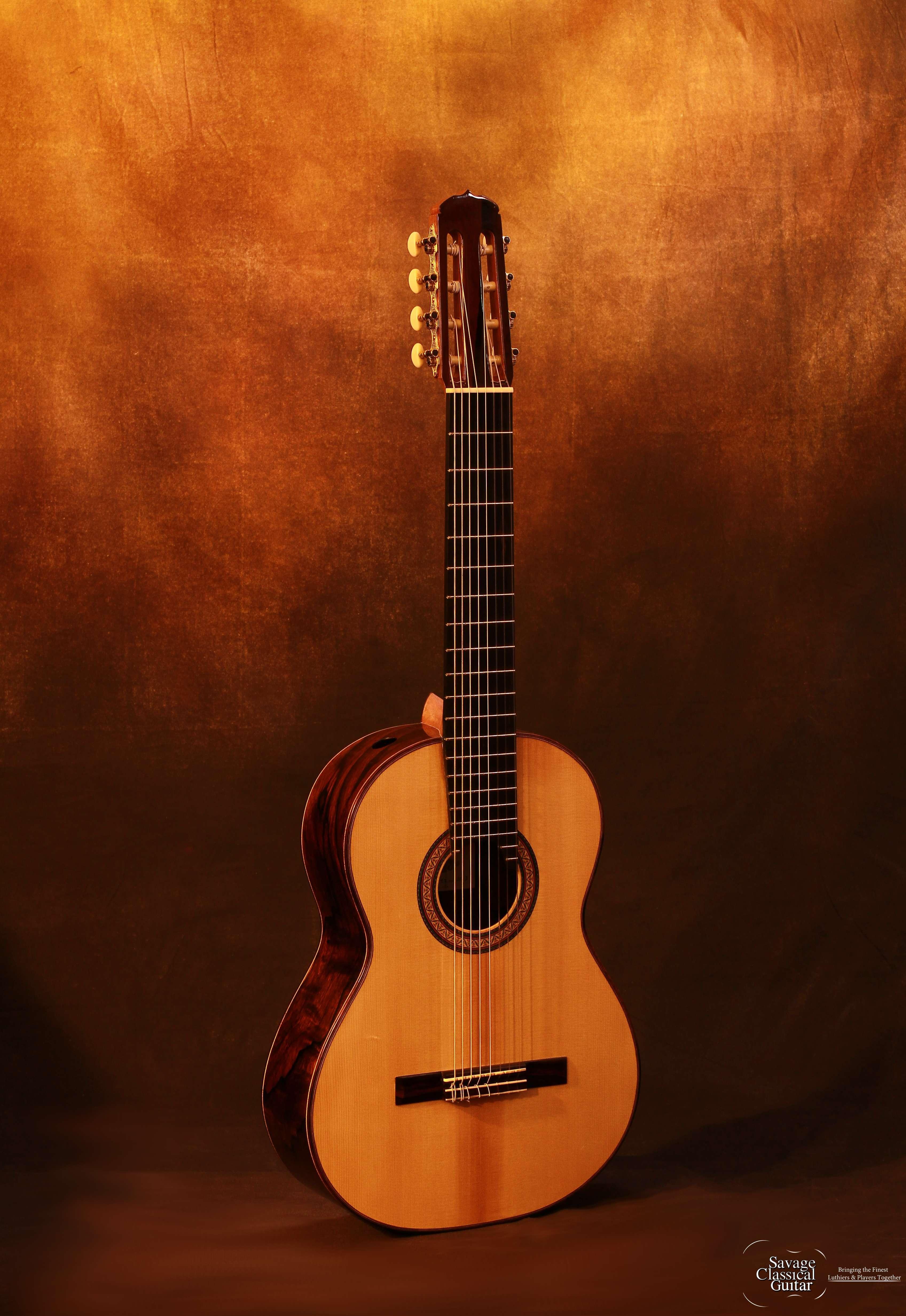 darren hippner 749 8 string savage classical guitar. Black Bedroom Furniture Sets. Home Design Ideas