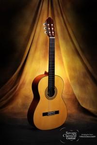 Esteve 3E Classical Guitar