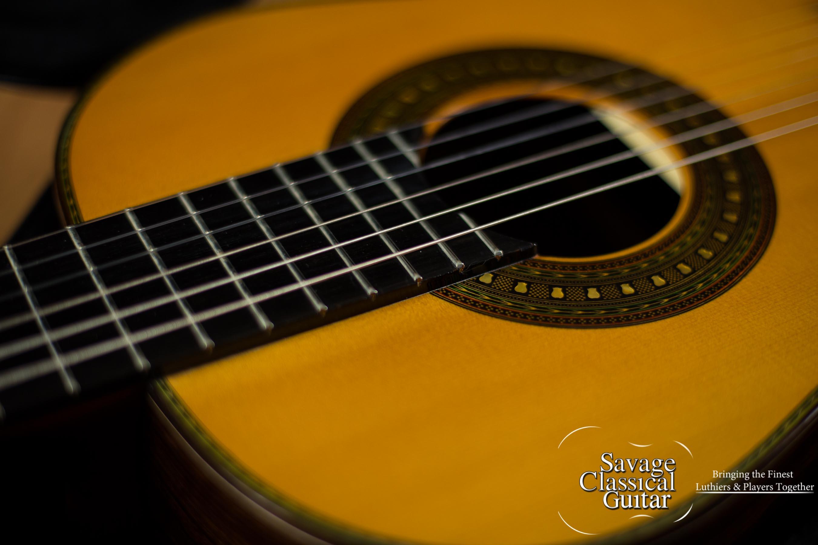 east german guitars