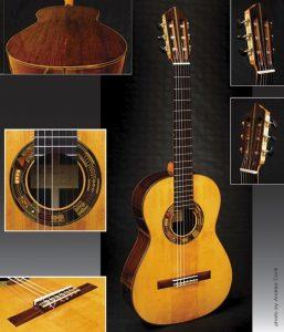 Arcimbolda Guitar