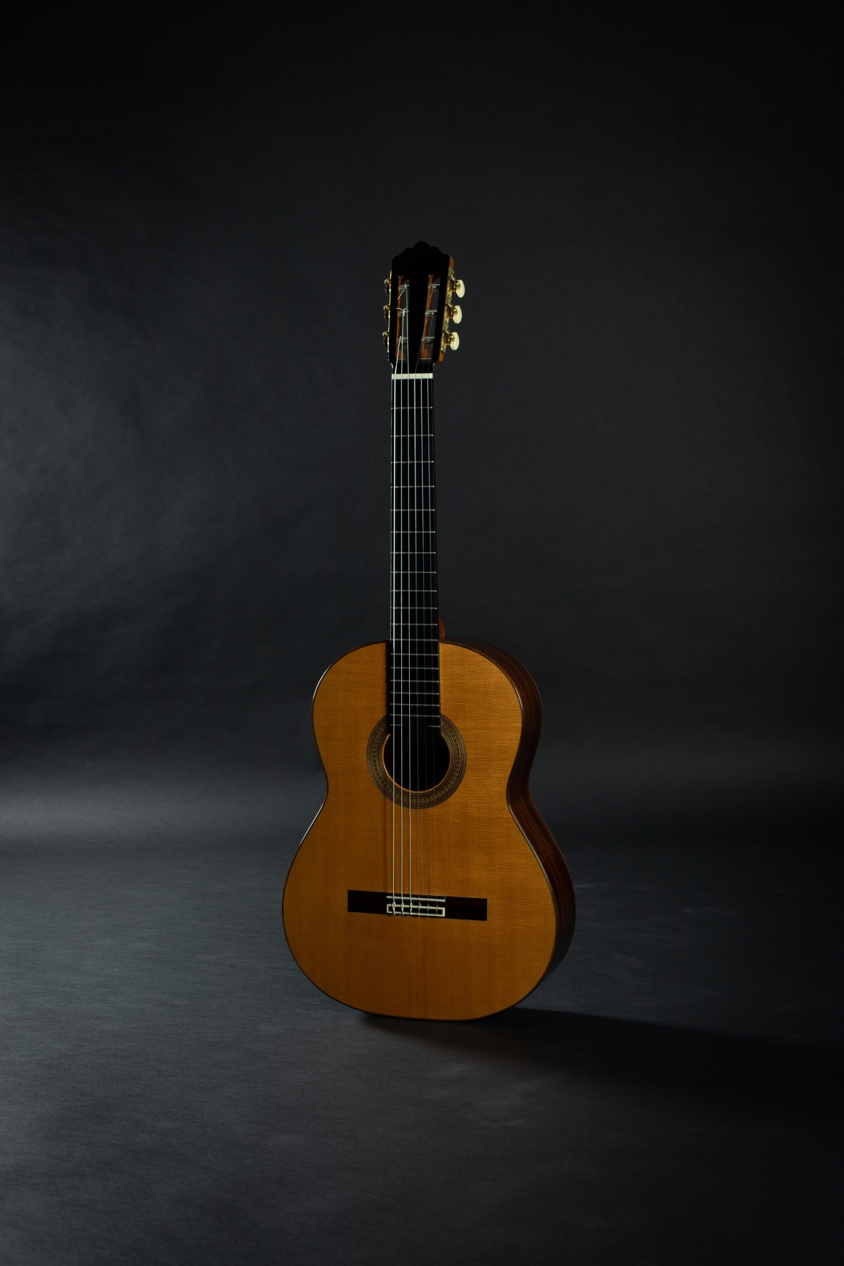 December 2019 Blog Updates Savage Classical Guitar