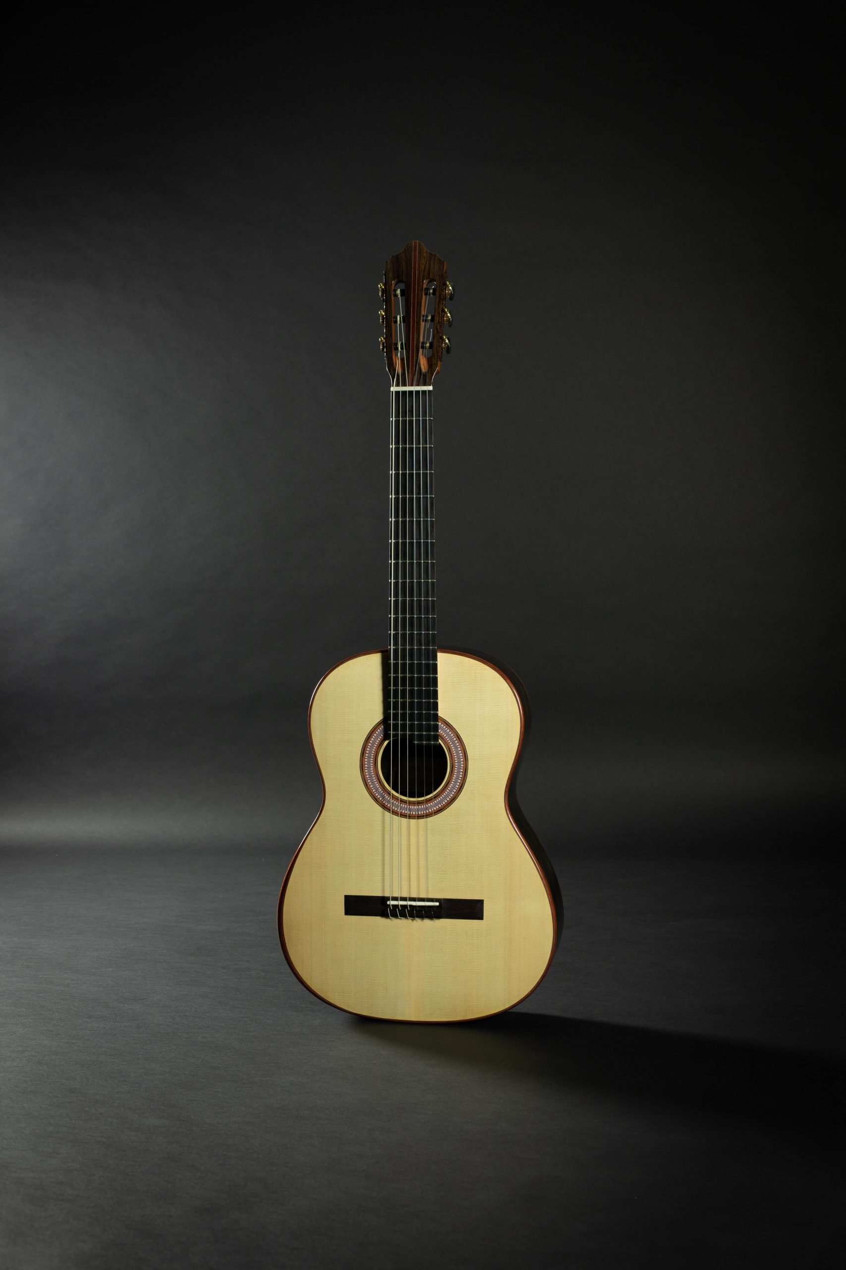 January 2020 Blog Updates Savage Classical Guitar