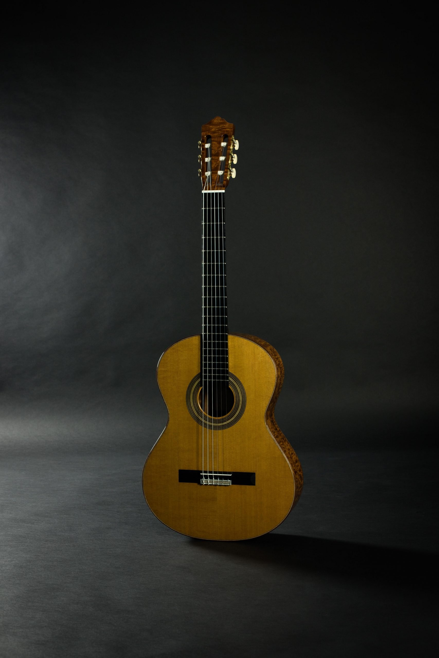 February 2020 Blog Updates Savage Classical Guitar