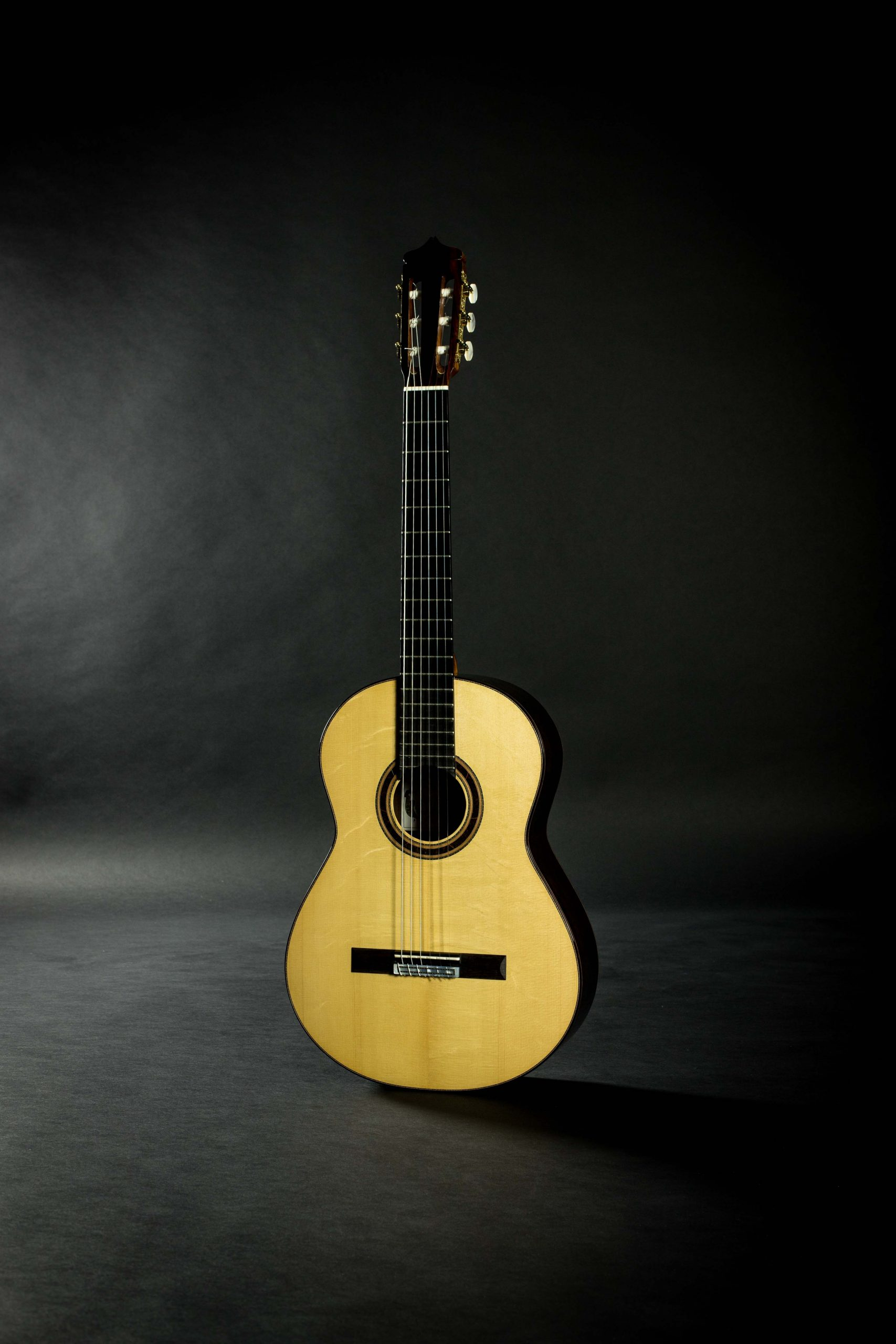 May 2020 Blog Updates Savage Classical Guitar