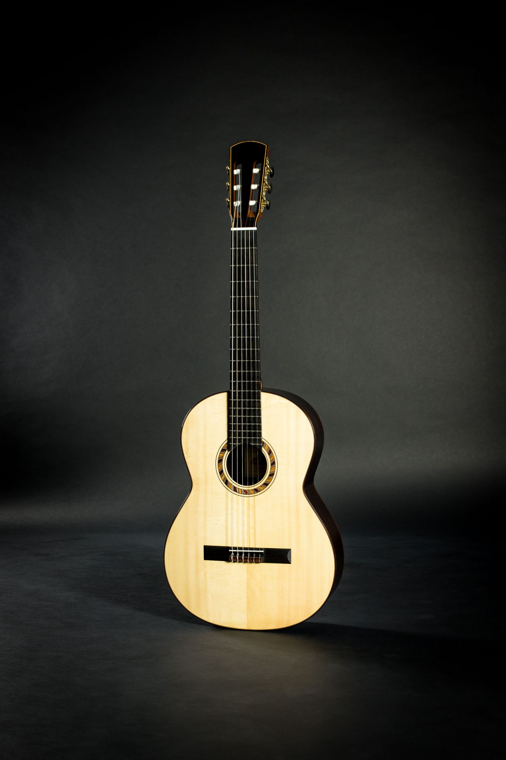 March 2020 Blog Updates Savage Classical Guitar
