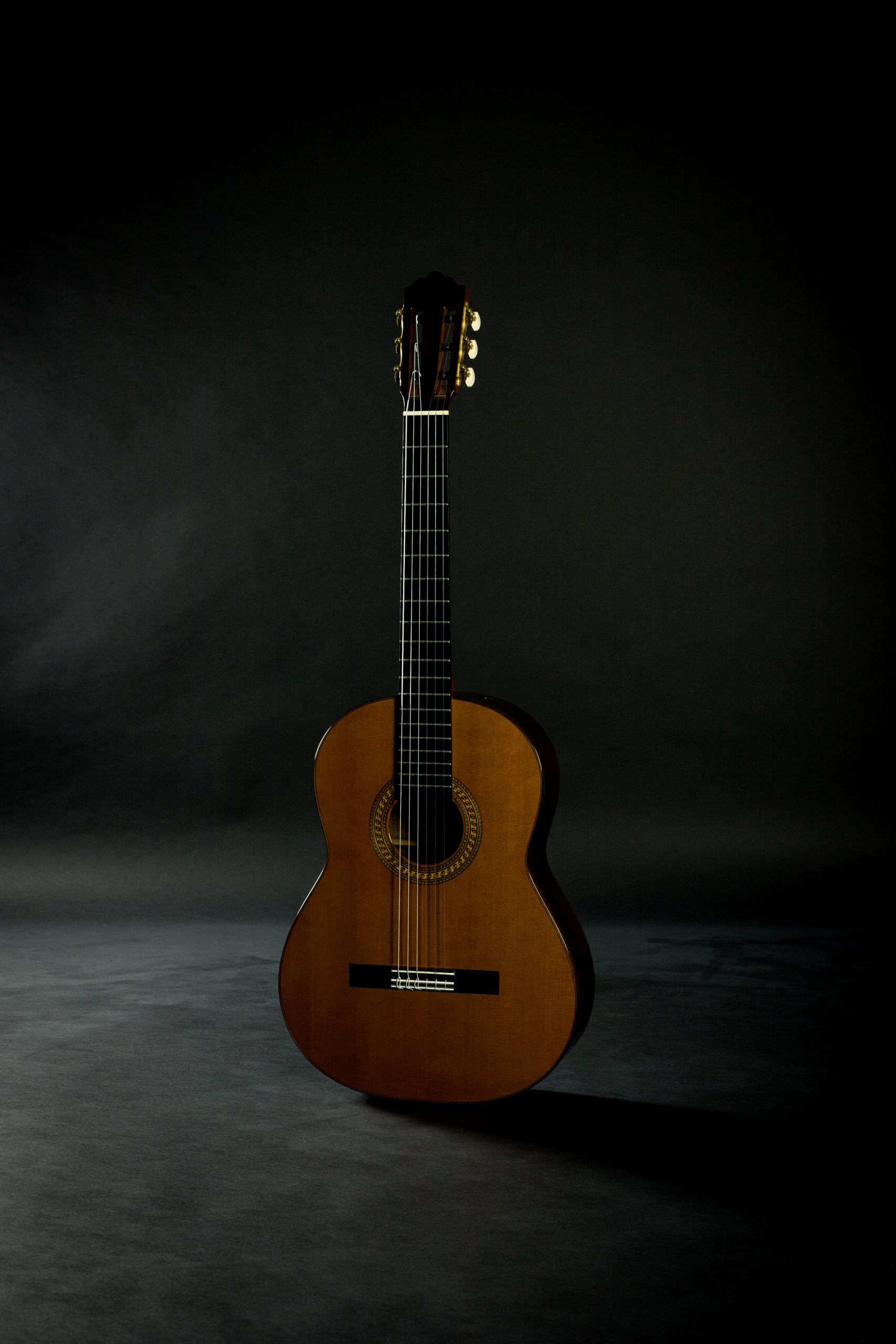 June 2020 Blog Updates Savage Classical Guitar