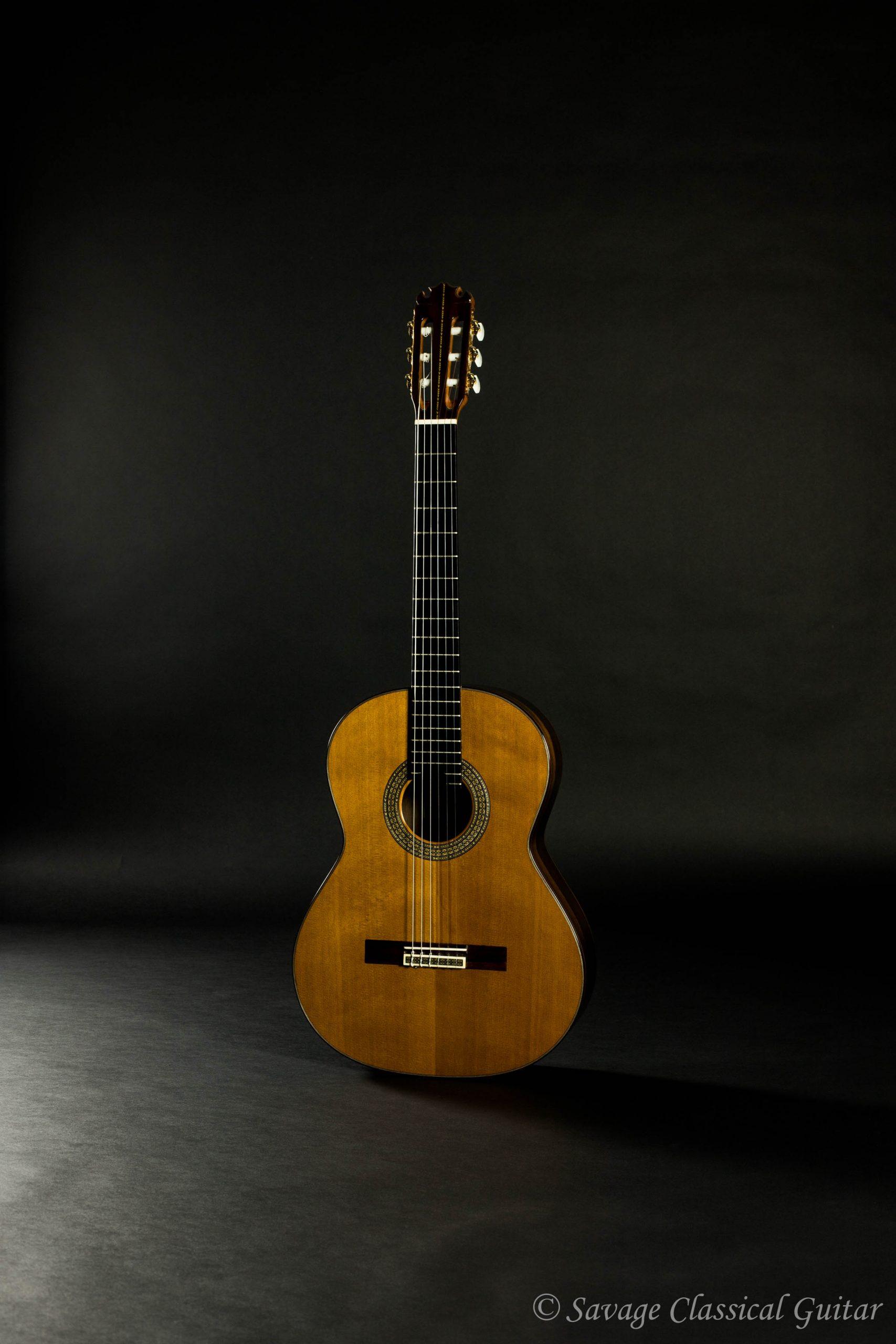 October 2020 Blog Updates Savage Classical Guitar