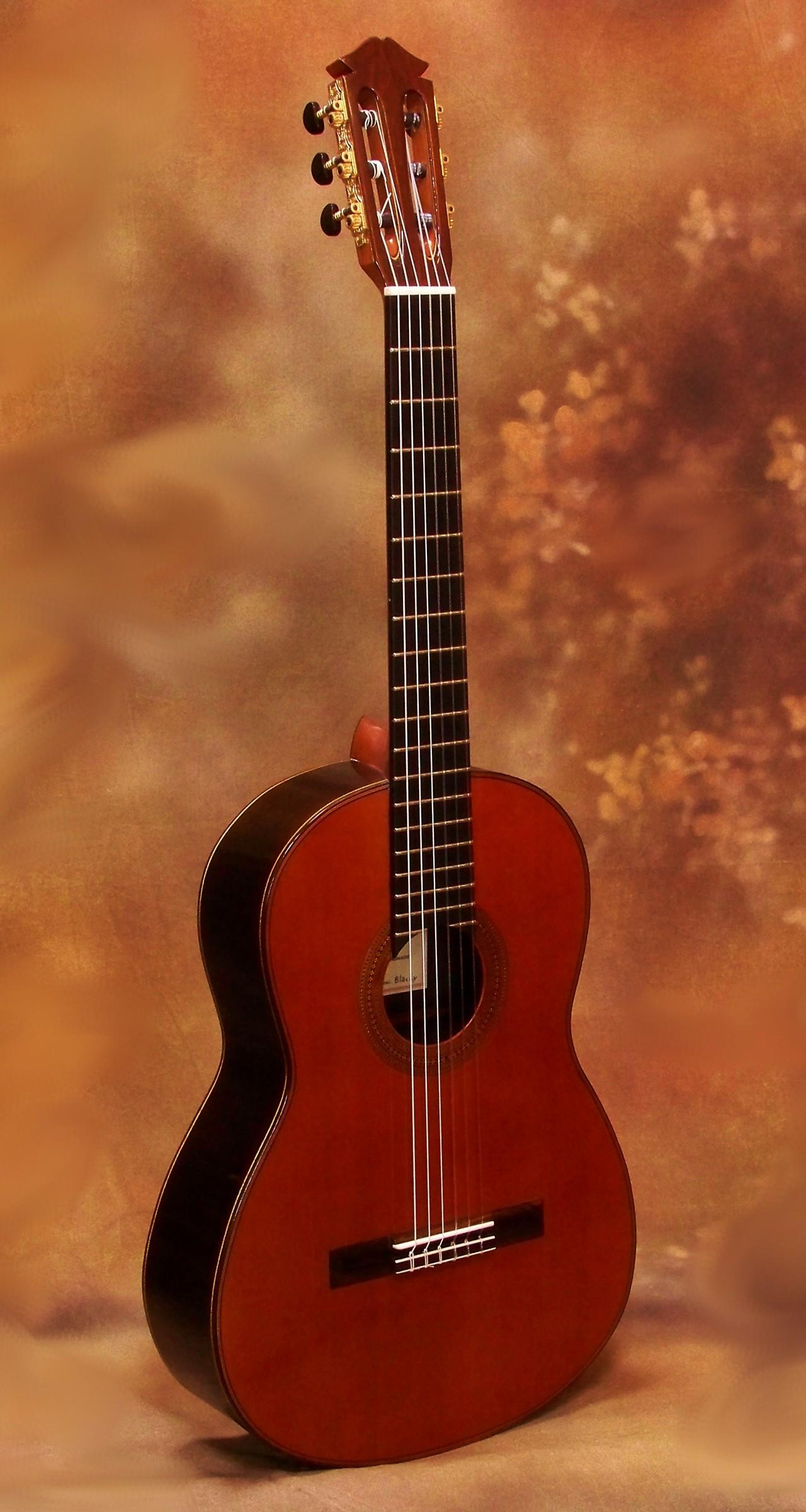 darren hippner blacky classical guitar 694 savage classical guitar. Black Bedroom Furniture Sets. Home Design Ideas