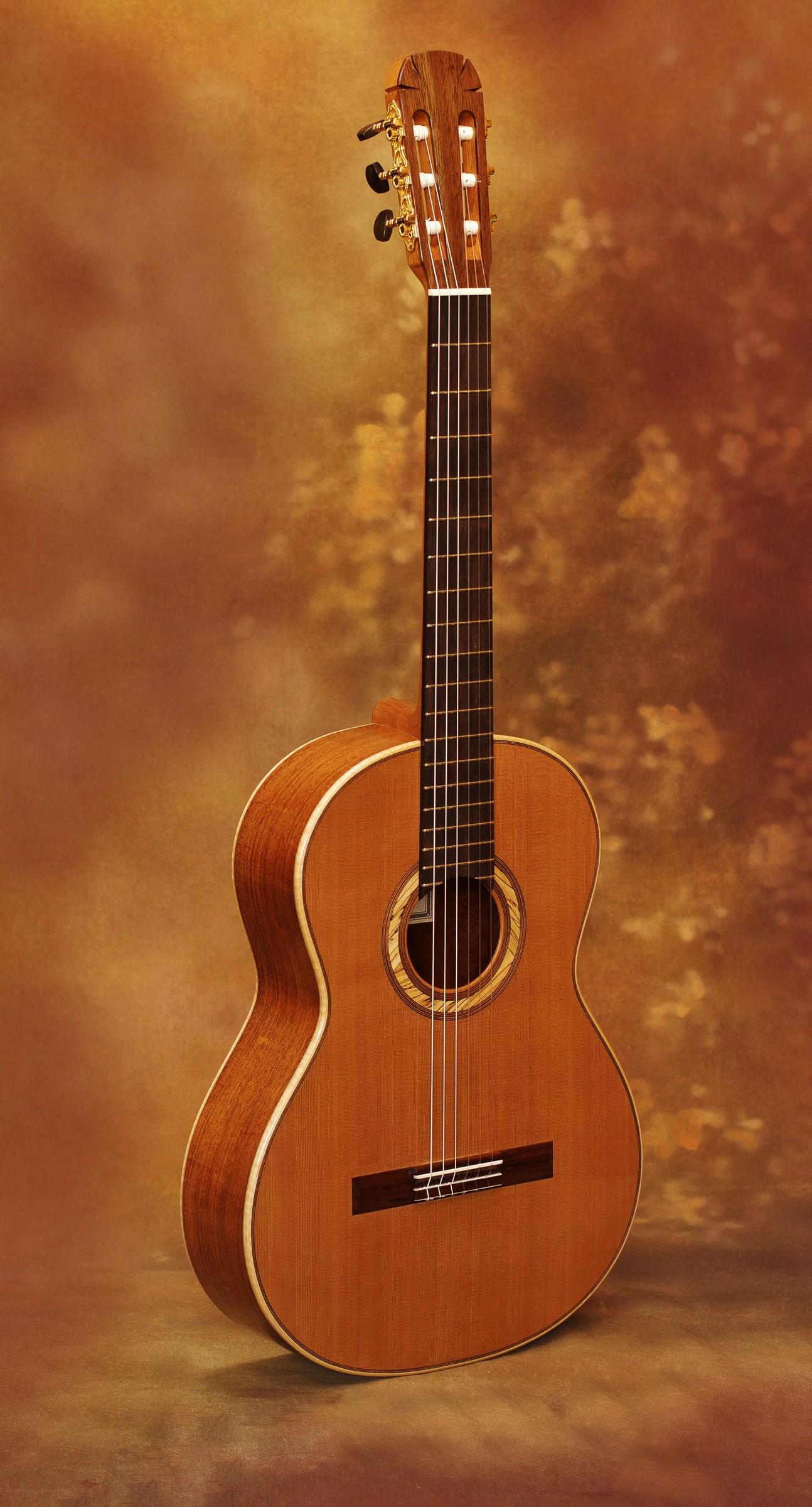Fernandez De Cordoba 2011 18 Savage Classical Guitar